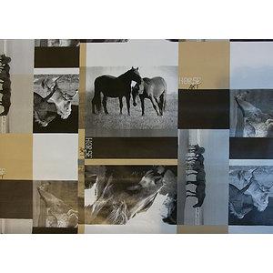 Toile cirée au mètre motif chevaux