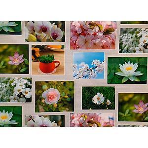 Toile cirée PVC 140 cm motif photos de fleurs